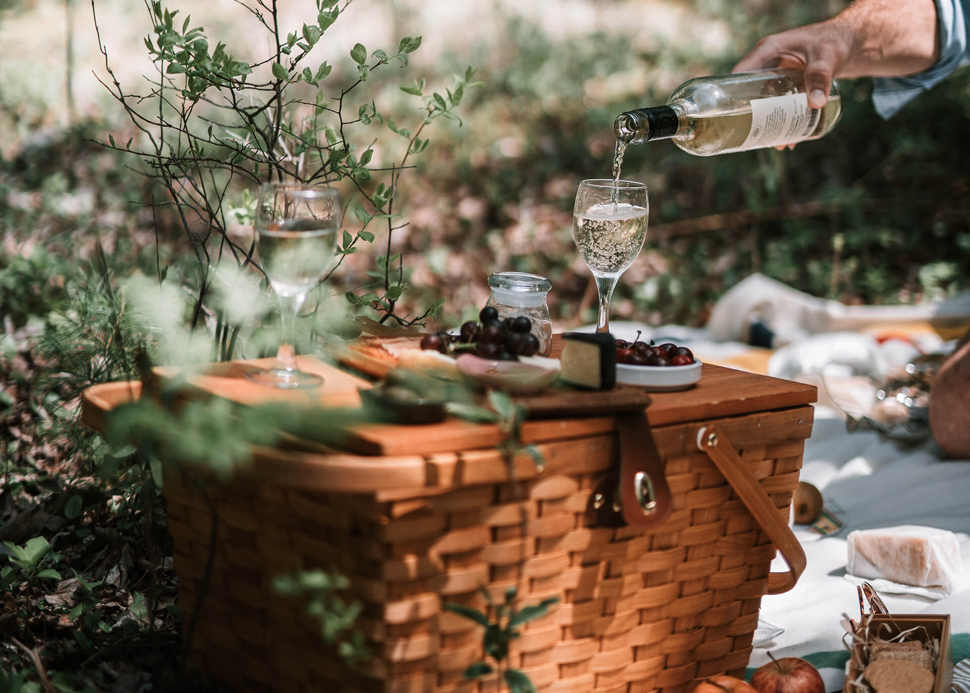 romantic picnic date ideas for food and drinks